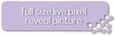 bt-campaign-full-pixel